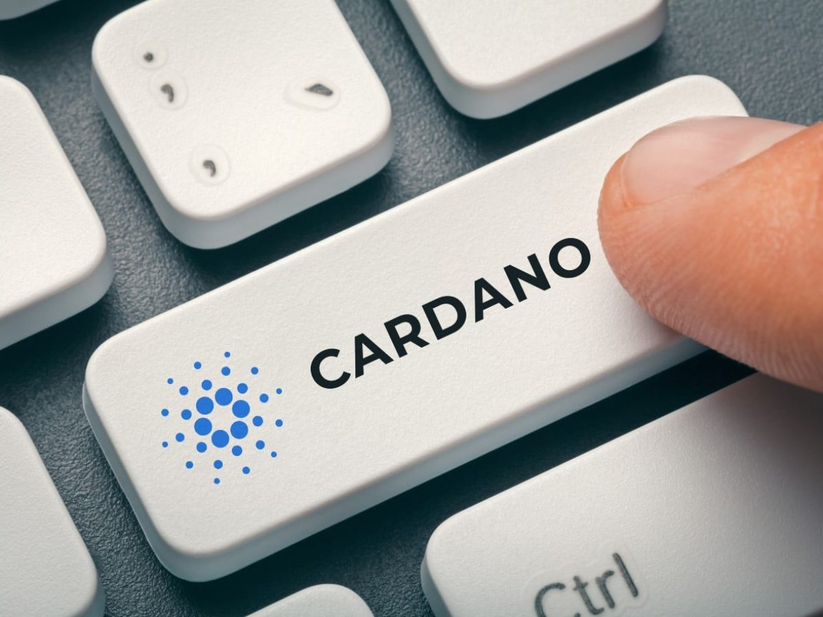 Cours Cardano